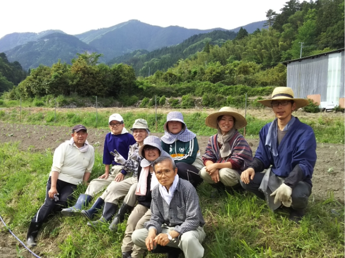 ケールには様々な品種がありますが理想とする青汁に適しているツリーケールの品種を栽培しています。